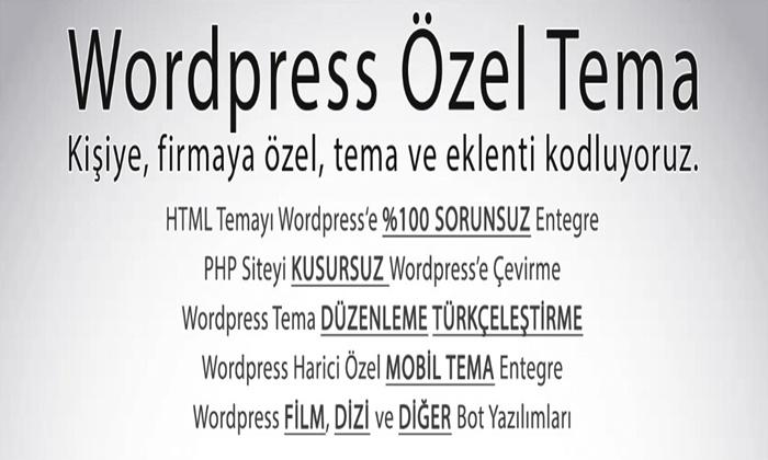WordPress Özel Tema