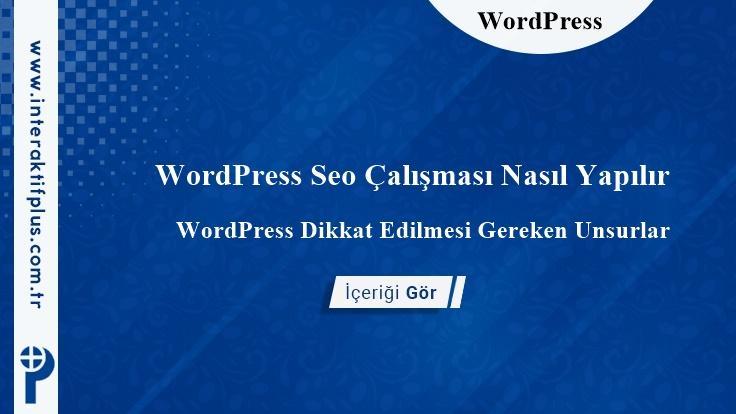 WordPress Seo Çalışması Nasıl Yapılır
