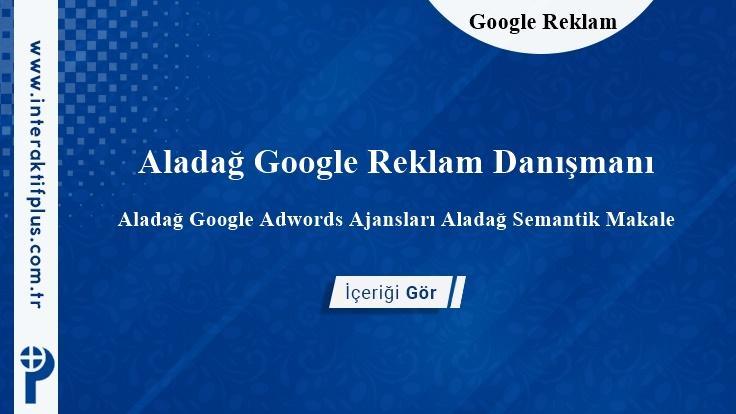 Aladağ Google Reklam Danışmanı