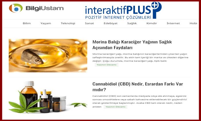 Bilgiustam.com Tanıtım Yazısı