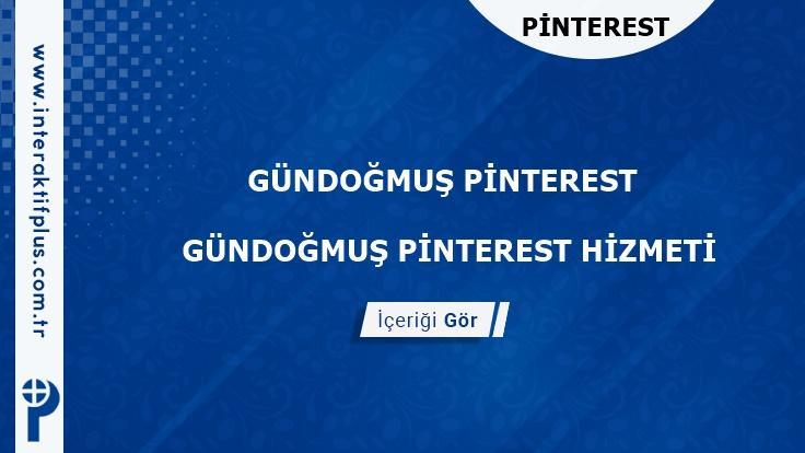 Gündogmus Pinterest instagram Twitter Reklam Danışmanı