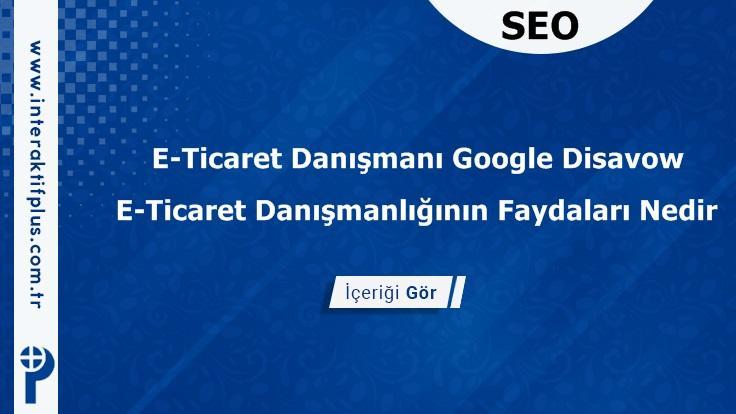 E-Ticaret Danışmanı Google Disavow