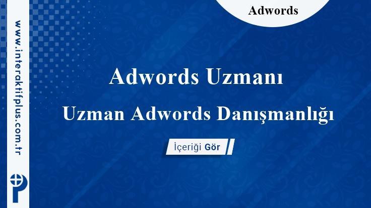 Adwords Uzmanı