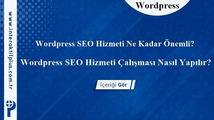 WordPress SEO Hizmeti
