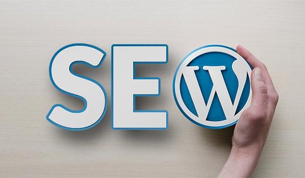 WordPress Seo Çalışması